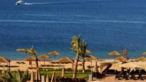 3 Nights 4 Days Private Lawrence of Arabia Tour: Petra - Wadi Rum and Aqaba, Aqaba, Multi-day Tours