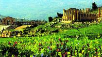 Private Full Day Tour to Jerash with Citadel and Roman Theater from Dead Sea, Dead Sea, Private Day ...