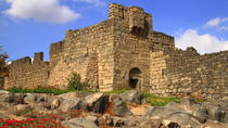 Private Tour: Desert Castle Tour of Eastern Jordan from Amman, Amman, Private Sightseeing Tours