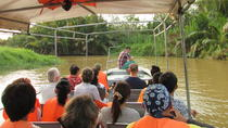 Weston Fireflies River Cruise from Kota Kinabalu City, Kota Kinabalu, Day Cruises