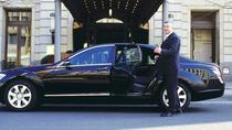 Private Arrival Airport Transfer from Frankfurt Airport to Mainz Downtown, Frankfurt, Private ...