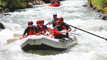 San Miguel River Afternoon Half Day Rafting, Durango, White Water Rafting & Float Trips