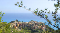Boat Trip of Cinque Terre with Pesto Course and Lunch, Piedmont & Liguria