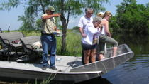 Small-Group Airboat Swamp Adventure and Plantation Tour from New Orleans, New Orleans, Bus & ...