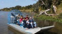 Small-Group Bayou Airboat Ride with Transport from New Orleans, New Orleans, Day Cruises
