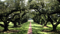 Tour in kleiner Gruppe nach Oak Alley und Laura Plantation von New Orleans aus, New Orleans