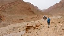 Trekking and Cultural Tour from Tinghir, Marrakech