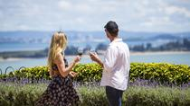 Private Waiheke Scenic Wine and Art Tour, Auckland, Wine Tasting & Winery Tours