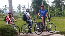 Downhill Bali Hidden Cycling Tour, Ubud, Bike & Mountain Bike Tours