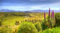 Full-Day Wine Gourmet and Scenic Delight Tour from Picton or Blenheim, Blenheim, Wine Tasting & ...