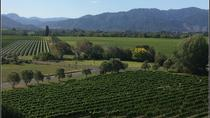 Private Wine Gourmet and Scenic Delights Tour from Picton, Picton, Private Sightseeing Tours