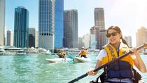Brisbane Kayak Tour, Brisbane