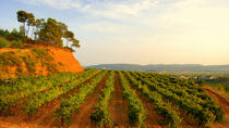 Barcelona Guided Local Wine Tasting Tour, Barcelona, Wine Tasting & Winery Tours