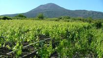 Pompeii and Vesuvius Wine Tasting Tour, Naples, Wine Tasting & Winery Tours