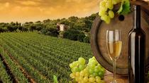Chianti Vineyards Tours, Florence, Private Transfers