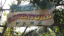St Lucia Shore Excursion: Treetop Adventure Park, St Lucia, Southern Caribbean Shore Excursions
