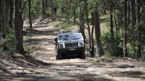 Gold Coast Lamington National Park and Tamborine Mountain 4WD  Eco Tour, Gold Coast, 4WD, ATV & ...