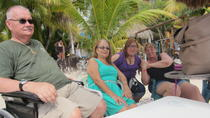 Island Tour with Limited Mobility, Cozumel