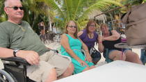 Wheelchair-Accessible Private Island Tour of Cozumel, Cozumel, Custom Private Tours