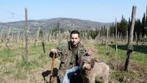 Truffle Picking with Lunch, Florence, Food Tours