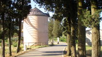 Wind Mill Visit and Olive Oil Tasting, Florence, Family Friendly Tours & Activities