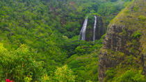 Kauai Day Trip: Waimea Canyon, Wailua River from Oahu, Oahu, Day Trips