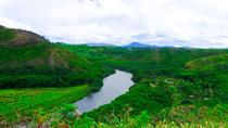 Kauai Waimea Canyon and Wailua River, Kauai, Full-day Tours