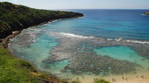 Oahu Grand Circle Island Day Tour with Dole Plantation, Oahu, Bus & Minivan Tours