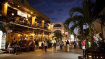 Playa del Carmen-Quinta Avenida Evening Tour with Dinner from Cancun, Cancun, Half-day Tours