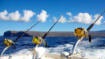Deep Sea Fishing from St Lucia, St Lucia, Fishing Charters & Tours