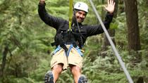 Rainforest Canopy Adventure from Vieux Fort or North Island, St Lucia, St Lucia, Nature & Wildlife