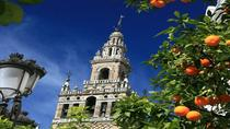 Santa Cruz Quarter and Cathedral Guided Day Tour in Seville, Seville, Day Trips