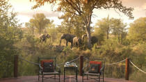 3-Day Kruger National Park Luxury Safari from Johannesburg, Johannesburg, Multi-day Tours
