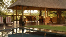 4-Night Sabi Sabi Luxury Safari, Kruger National Park, Nature & Wildlife
