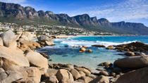 Cape Peninsula Tour from Cape Town, Cape Town, null