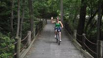 Mt Vernon Independent Bike Tour with Optional Potomac River Cruise, Washington DC, Bike & Mountain ...
