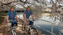 Viator Exclusive: Mt Vernon Trail and Washington DC Cherry Blossom Bike Tour from Alexandria, ...