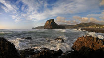 Half-Day Wild West Coast Tour including Lunch from Auckland, Auckland, Half-day Tours