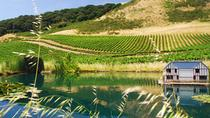 Semi Private Small Group Wine Country Tour from San Francisco, San Francisco, Food Tours