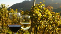 Private Tour: Austrian Wine Tasting in a Traditional Augustinerkeller, Vienna, Segway Tours