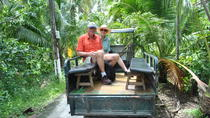 Mekong Rural Life 2-Day Home-Stay from Ho Chi Minh, Ho Chi Minh City, Multi-day Tours