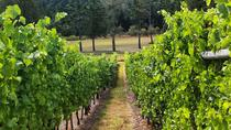 Cowichan Valley Wine Tour in Vancouver Island, Victoria, Wine Tasting & Winery Tours
