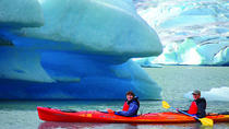 Mendenhall Lake Kayaking Adventure, Juneau, Nature & Wildlife