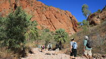 10-Day Kimberley 4WD Camping Experience from Darwin to Broome, Darwin, Multi-day Tours