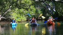Brunswick Heads Eco Kayak Cruise and Stand-Up Paddleboarding, Brunswick Heads, Kayaking & Canoeing