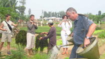 Full-Day Hoi An Countryside Bike Tour Including Thanh Nam and Tra Que Villages and Cooking Class,...