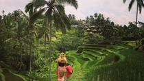 Private Tour: Balinese Culture and Scenery, Bali, Nature & Wildlife