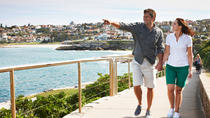 Private Best of Bondi Tour Including Surf Lesson and Lunch at Icebergs Dining Room, Sydney