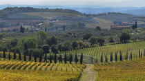 Chianti Half-Day Private Wine Tour , Siena, Wine Tasting & Winery Tours