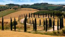 Half-Day Tour of Montalcino and Crete Senesi from Siena, Siena, Private Day Trips